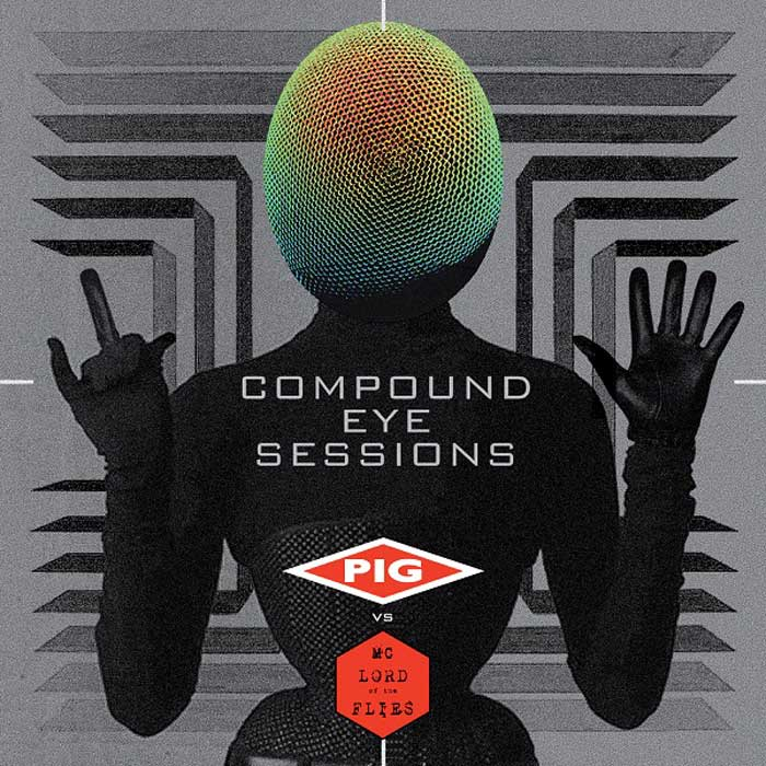 COMPOUND EYE SESSIONS